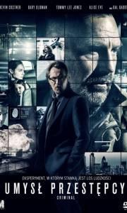 Umysł przestępcy online / Criminal online (2016) | Kinomaniak.pl