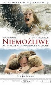 Niemożliwe online / Impossible, the online (2012) | Kinomaniak.pl