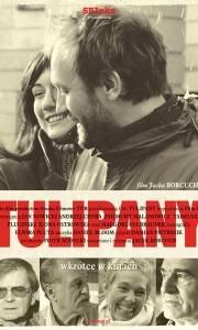 Tulipany online (2004) | Kinomaniak.pl