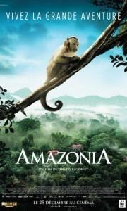 Amazonia. przygody małpki sai online / Amazonia online (2013) | Kinomaniak.pl