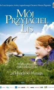 Mój przyjaciel lis online / Renard et l'enfant, le online (2007) | Kinomaniak.pl