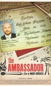 Ambasador online / Ambassador, the online (2011) | Kinomaniak.pl