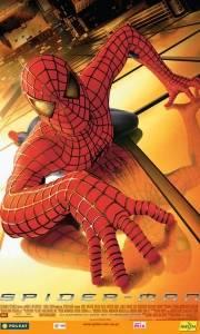 Spider-man online (2002) | Kinomaniak.pl