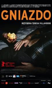 Gniazdo online / Colo online (2017) | Kinomaniak.pl
