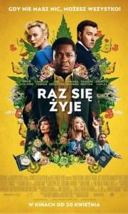 Raz się żyje online / Gringo online (2018) | Kinomaniak.pl