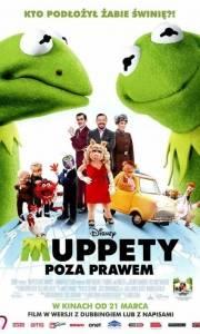 Muppety: poza prawem online / Muppets most wanted online (2014) | Kinomaniak.pl