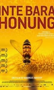 Więcej niż miód online / More than honey online (2012) | Kinomaniak.pl