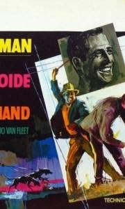 Nieugięty luke online / Cool hand luke online (1967) | Kinomaniak.pl