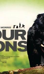 Cztery lwy online / Four lions online (2010) | Kinomaniak.pl