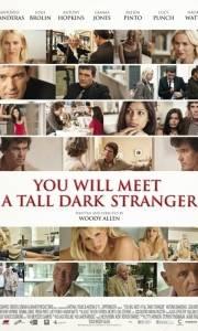 Poznasz przystojnego bruneta online / You will meet a tall dark stranger online (2010) | Kinomaniak.pl