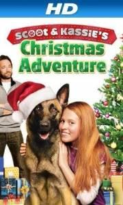 K-9: pies, który uratował święta online / K-9 adventures: a christmas tale online (2013) | Kinomaniak.pl