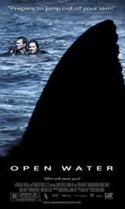 Ocean strachu online / Open water online (2003) | Kinomaniak.pl