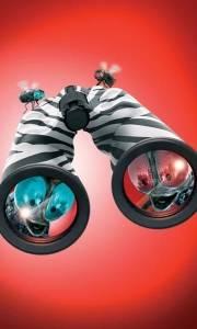 Zebra z klasą online / Racing stripes online (2005) | Kinomaniak.pl