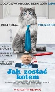 Jak zostać kotem online / Nine lives online (2016) | Kinomaniak.pl