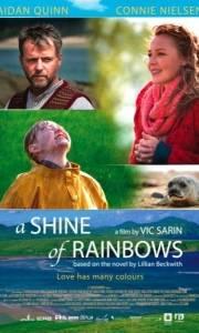 Blask tęczy online / Shine of rainbows, a online (2009) | Kinomaniak.pl