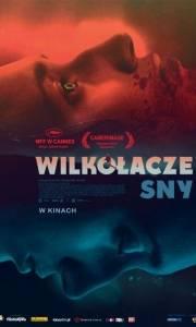 Wilkołacze sny online / Når dyrene drømmer online (2014) | Kinomaniak.pl