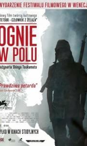 Ognie w polu online / Nobi online (2014) | Kinomaniak.pl