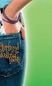 Stowarzyszenie wędrujących dżinsów online / Sisterhood of the traveling pants, the online (2005) | Kinomaniak.pl