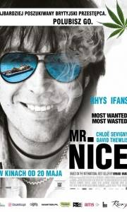 Mr. nice online (2010)   Kinomaniak.pl