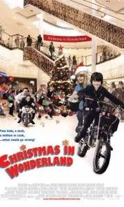 Christmas in wonderland online (2007) | Kinomaniak.pl