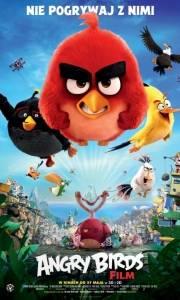 Angry birds film online / Angry birds online (2016) | Kinomaniak.pl