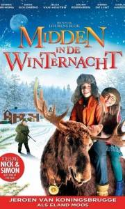 Gdzie jest mikołaj? online / Midden in de winternacht online (2013) | Kinomaniak.pl