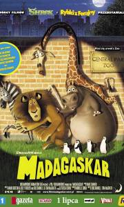 Madagaskar online / Madagascar online (2005) | Kinomaniak.pl