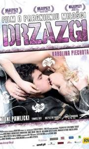 Drzazgi online (2008)   Kinomaniak.pl