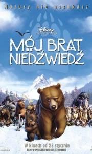 Mój brat niedświedś online / Brother bear online (2003) | Kinomaniak.pl