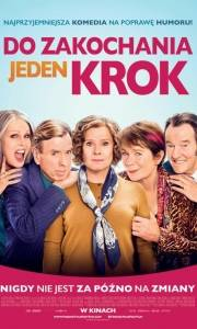 Do zakochania jeden krok online / Finding your feet online (2017) | Kinomaniak.pl