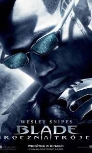 Blade mroczna trójca online / Blade: trinity online (2004) | Kinomaniak.pl