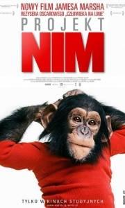 Projekt nim online / Project nim online (2011) | Kinomaniak.pl