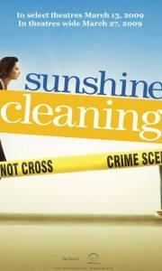 Sunshine cleaning online (2008)   Kinomaniak.pl