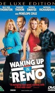 Obudzić się w reno online / Waking up in reno online (2002) | Kinomaniak.pl