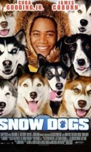 Śnieżne psy online / Snow dogs online (2002) | Kinomaniak.pl