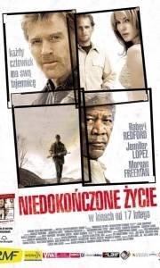 Niedokończone życie online / Unfinished life, an online (2005) | Kinomaniak.pl