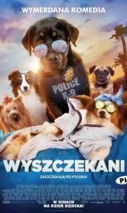 Wyszczekani online / Show dogs online (2018) | Kinomaniak.pl
