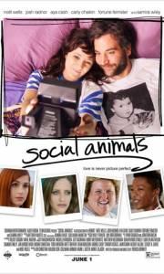 Bez względu na wszystko online / Social animals online (2018) | Kinomaniak.pl