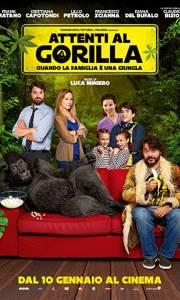 Uwaga na goryla online / Attenti al gorilla online (2019) | Kinomaniak.pl