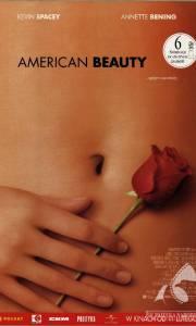 American beauty online (1999) | Kinomaniak.pl