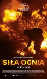 Siła ognia online / O que arde online (2019) | Kinomaniak.pl
