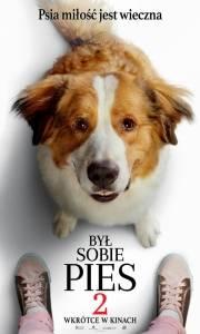 Był sobie pies 2 online / A dog's journey online (2019) | Kinomaniak.pl