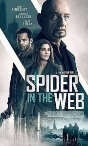 Pająk w sieci online / Spider in the web online (2019) | Kinomaniak.pl