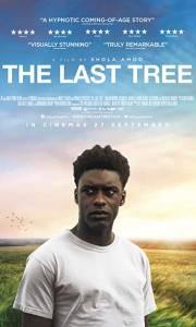 Ostatnie drzewo online / The last tree online (2019) | Kinomaniak.pl