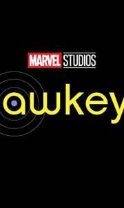 Hawkeye online (2021-) | Kinomaniak.pl