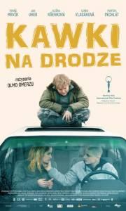 Kawki na drodze online / Všechno bude online (2018) | Kinomaniak.pl