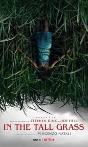 W wysokiej trawie online / In the tall grass online (2019) | Kinomaniak.pl