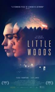 Little woods online (2018) | Kinomaniak.pl