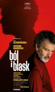 Ból i blask online / Dolor y gloria online (2019) | Kinomaniak.pl