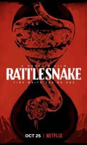 Grzechotnik online / Rattlesnake online (2019) | Kinomaniak.pl